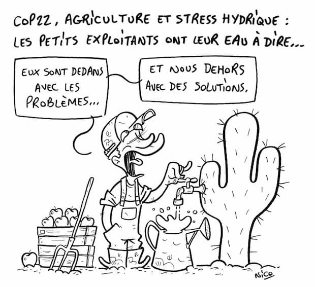des solutions pour le climat