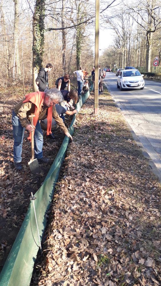 Instalation de la barrière © L'association R.E.N.A.R.D