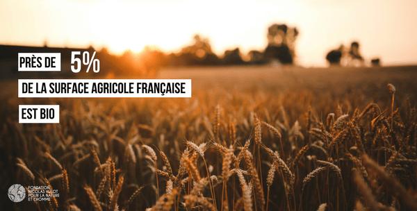 agriculture bio en france