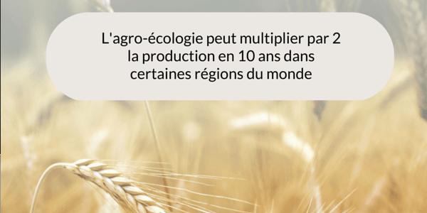 agro-ecologie-TW