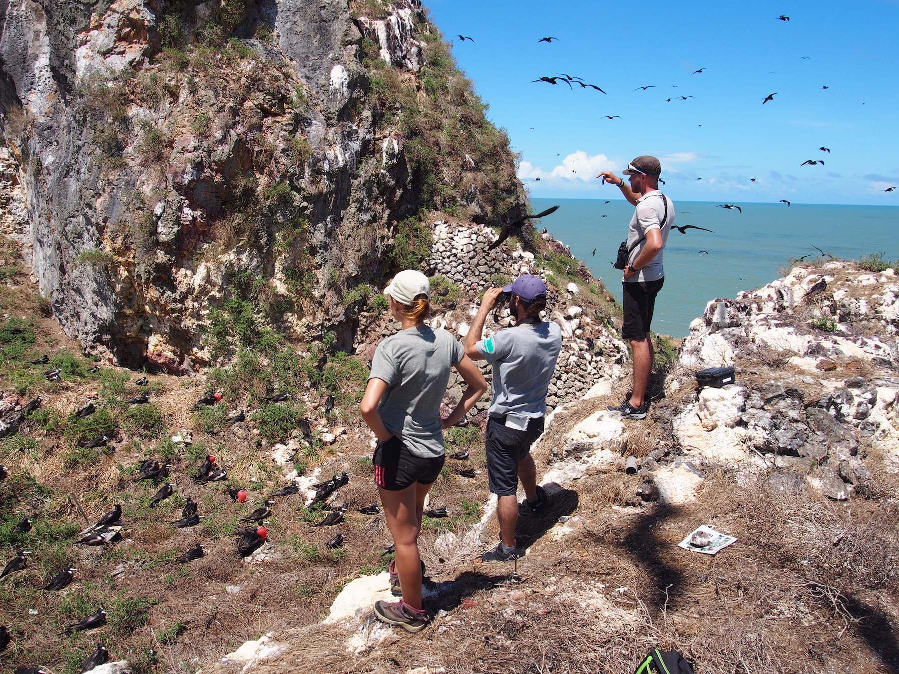 3 personnes observent des oiseaux volant au bord de la mer pour les compter