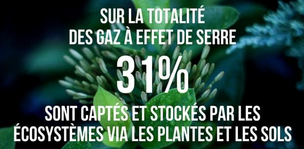 GES et ecosystèmes