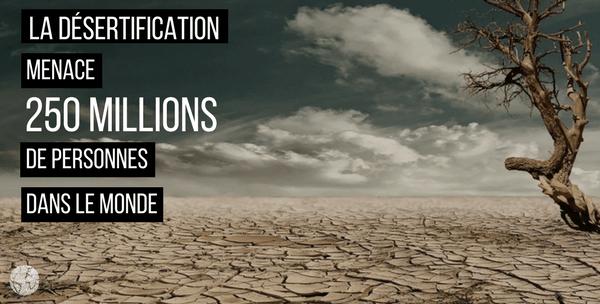 la désertification menace le monde