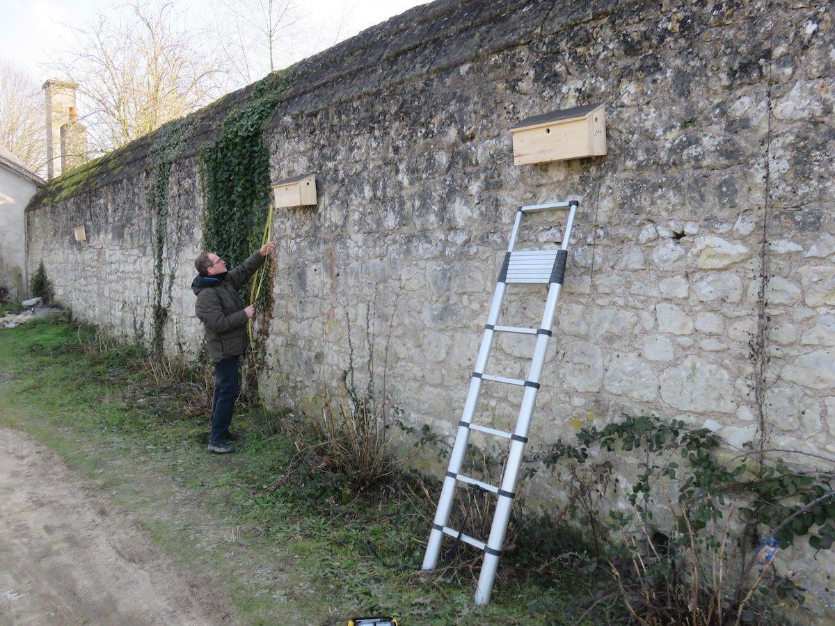 © Julien Présent/LPO Touraine