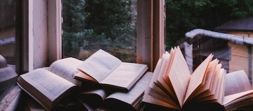Livres ouverts devant une fenêtre donnant sur des arbres et un coucher ou lever de soleil