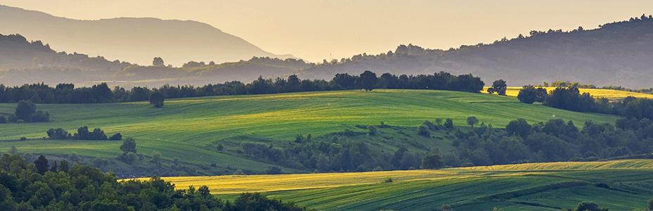10 organisations demandent une loi foncière pour 2021