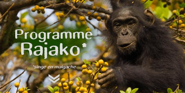 Programme Rajako